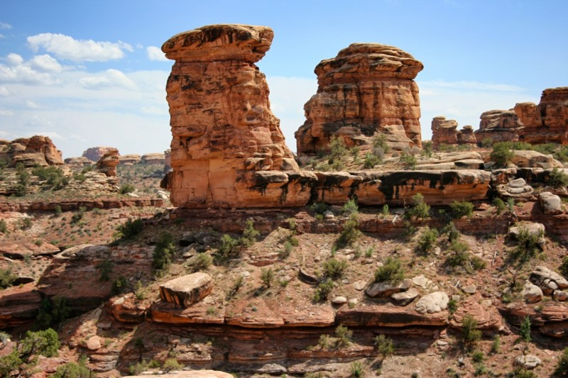 Various layers of Cedar Mesa sandstone erode at different rates to create these unusual rock formations