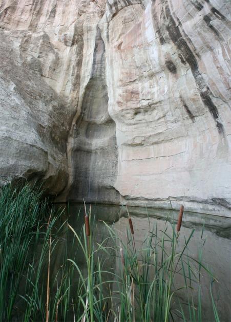 El Morro waterhole