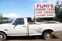 Fumi's truck