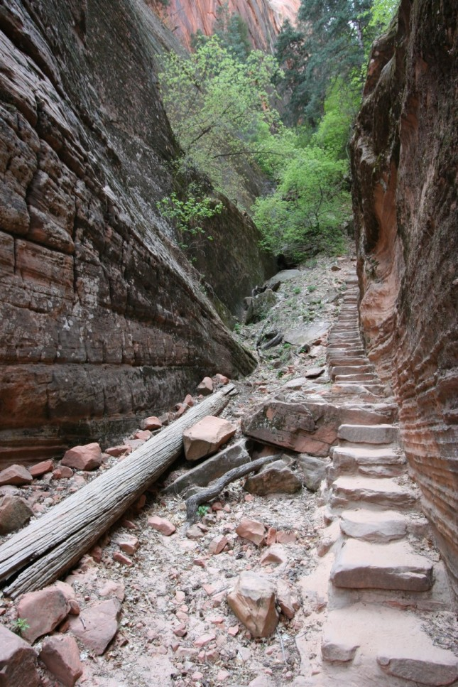 Sandstone steps simplify ascents on steeper climbs