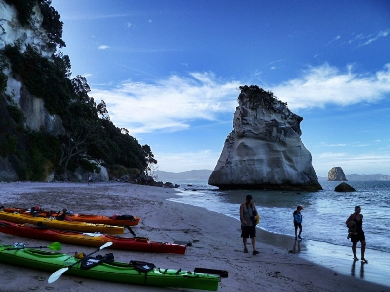 cathedral cove tour-1