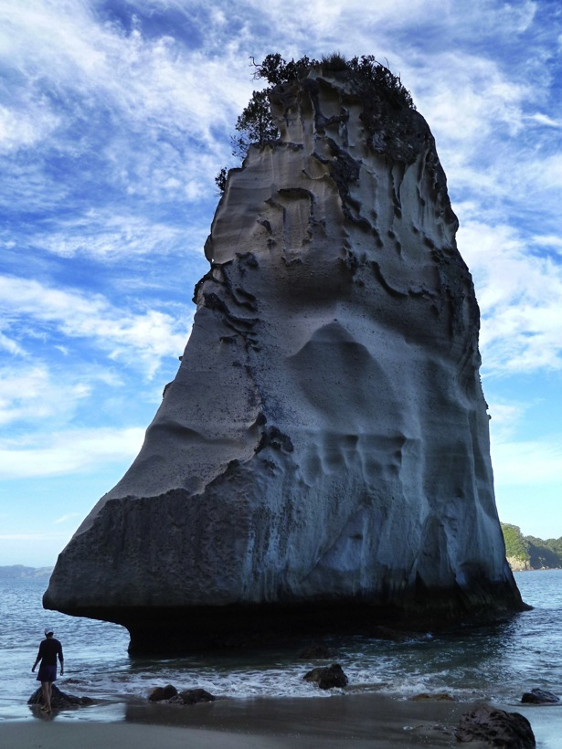 cathedral cove tour-3