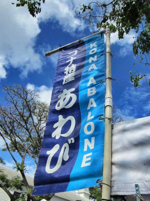abalone_banner