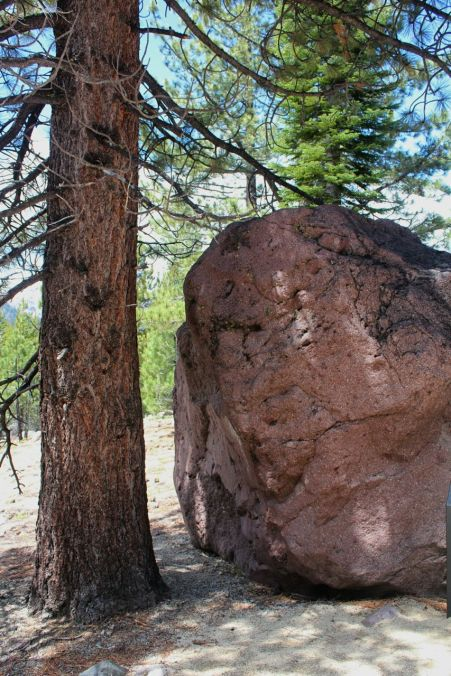 Red dacite boulder carried here by a pyroclastic flow from Lassen Peak