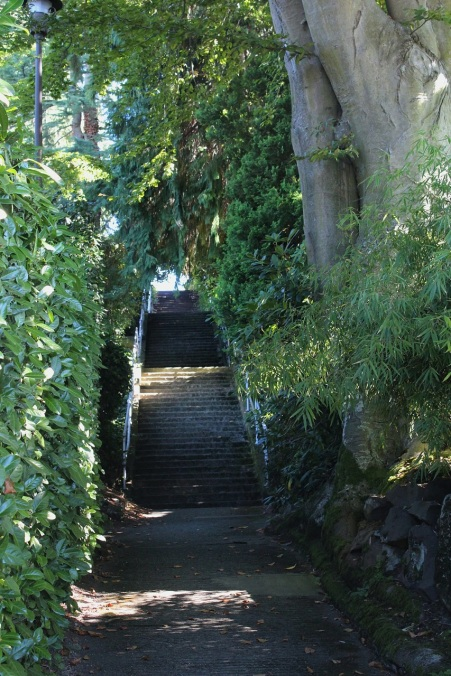 Stairway at Galer and 8th