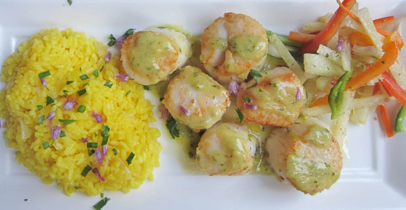 Colossal scallops, lemon-garlic vinaigrette, saffron rice, vegetable and jicama slaw