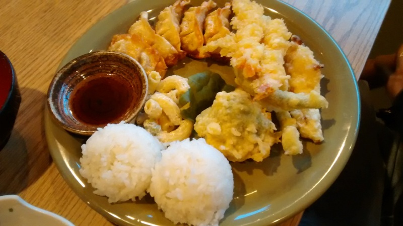 Combination Dinner with Gyoza and Tempura