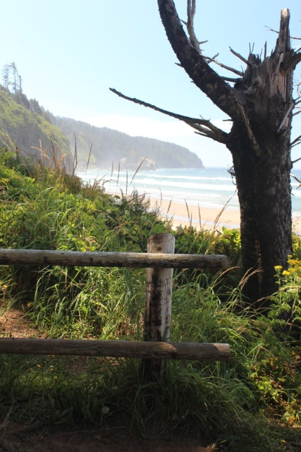 South Trail, Cape Lookout State Park, View toward Cape Kiwanda