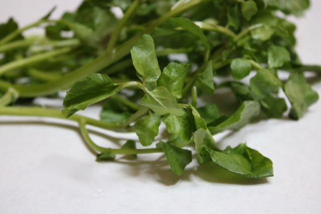 watercress - 1