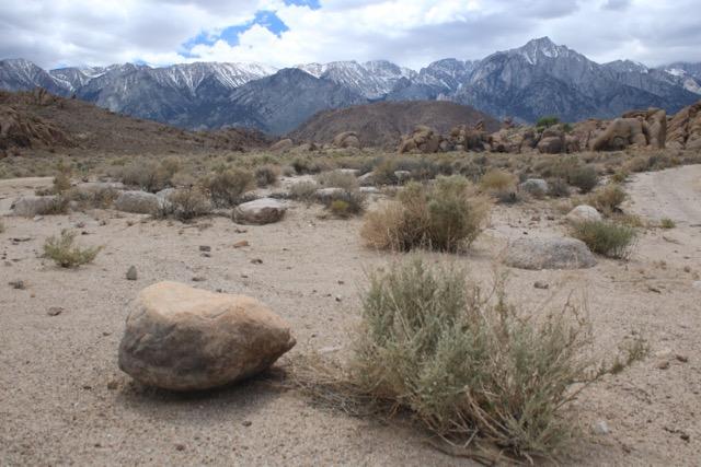 Sierra Nevadas in the distance
