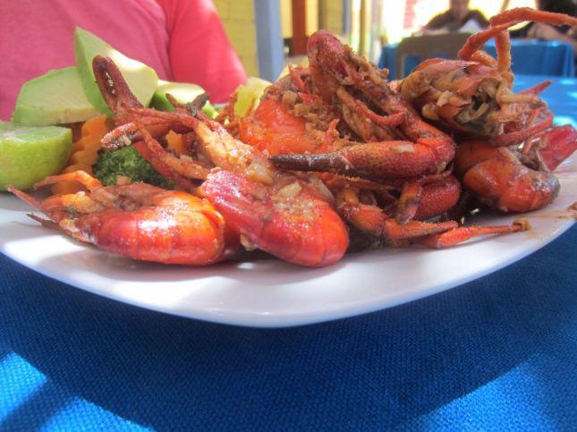 majes river shrimp