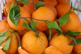 Oranges at the souk